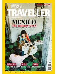Back Issue - November 19